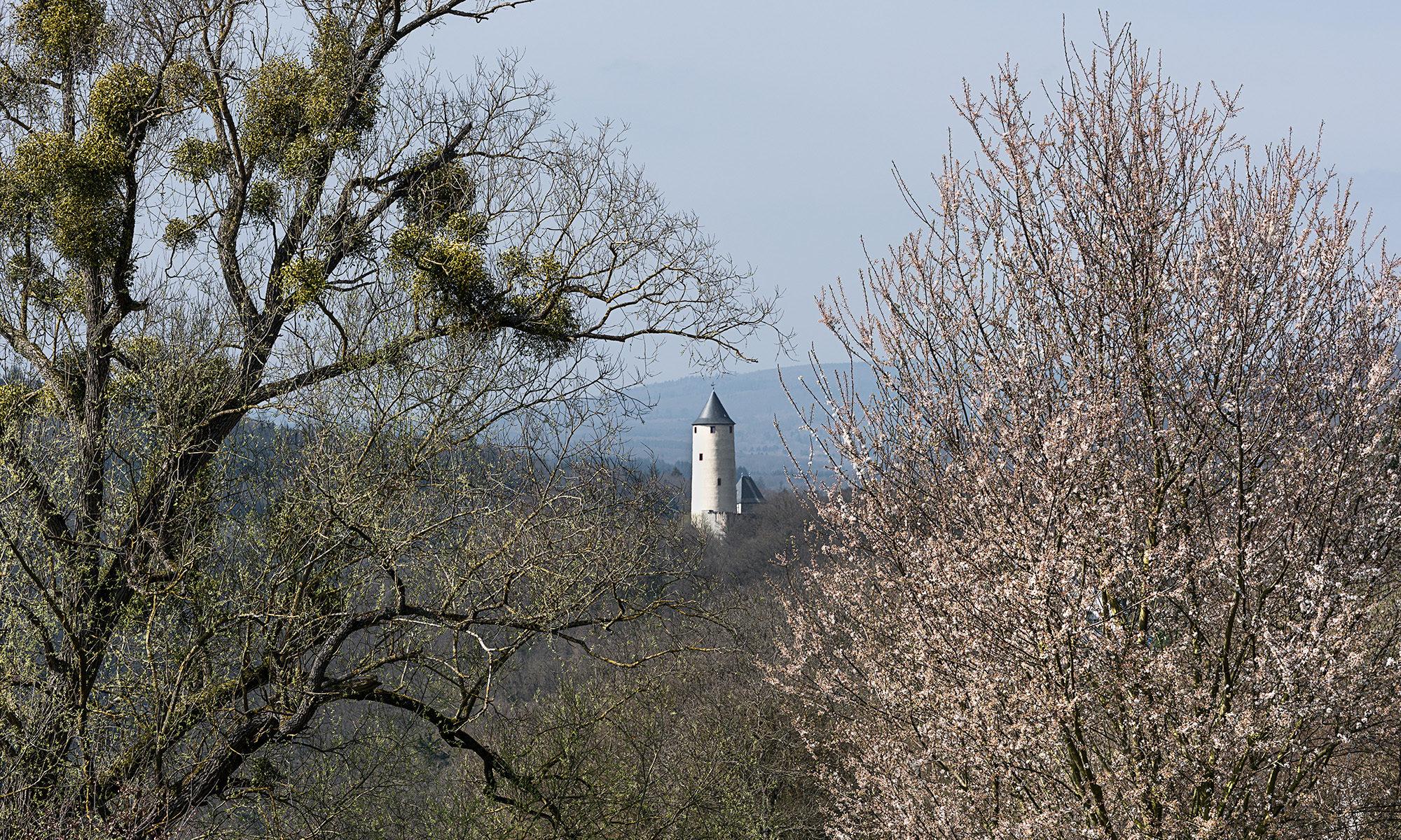 Stadtfotograf Stromberg